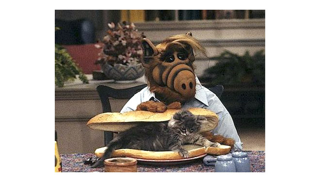 Alf Cat Sandwich